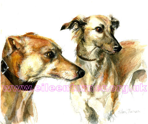 Two lurchers